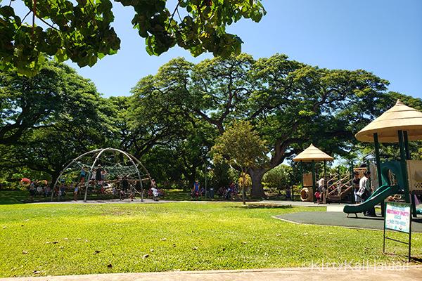 zoo-playground1.jpg